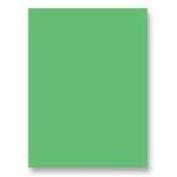 Pacon 30cm x 46cm Spectra(R) Art Tissue, Spring Green