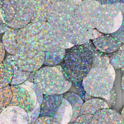 20mm Flat Round SEQUIN PAILLETTES ~ SILVER MULTI HOLOGRAM Metallic ~ Loose sequins for embroidery, bridal, applique, arts, crafts, and embellishment. Made in USA.