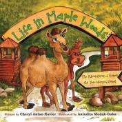 Life in Maple Woods