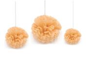 Saitec ® 12PCS Mixed Sizes Peach Tissue Paper Flower Pom Poms Pompoms Wedding Birthday Party Nursery Decoration