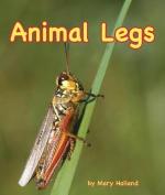 Animal Legs