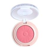 Mallofusa Baked Blush Powder Blusher Makeup Palette Matte 10ml Ware Pink