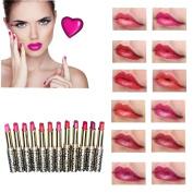 LHWY 12pcs/lot Lipsticks Lip Stain Makeup Lot Leopard Moisturising Lip Stick Set